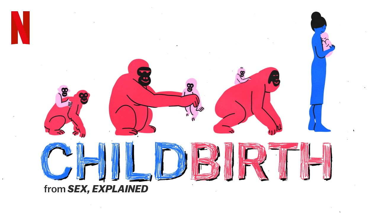 Netflix, sex, explained childbirth